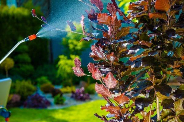 Jardinerie Denormandie - Horticulture & Matériel