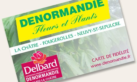 services-carte-de-fidelite-denormandie