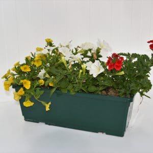 Jardinière mélange 40 cm